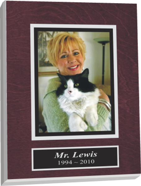 All animals are special, but cats have a knack of getting to our hearts. A great way to celebrate the life of an animal by commemorating their lives with a pet plaque.