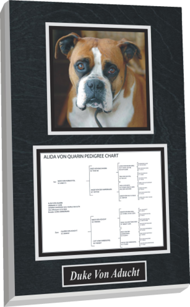 Dog Plaque with certification or family tree
