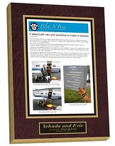 frame published articles, published articles framed