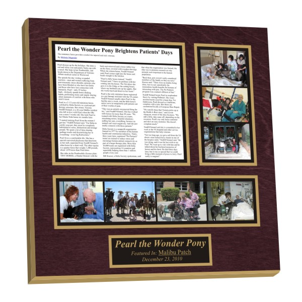 preserving newspaper articles into wall plaques,newspaper wall plaques,newspaper plaques
