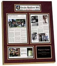 newspaper frame, newspaper frames, framed article plaque