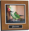digital photo,wall art,wall display,screen capture