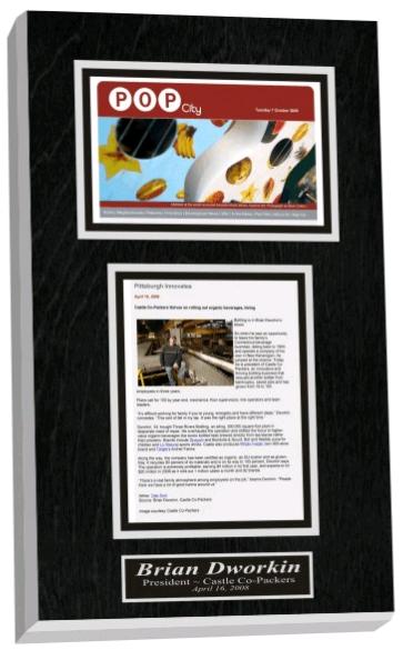 news releases, press releases, frame online articles, display blogs, frame websites