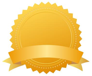 A blank award.